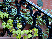 Wrought Iron Railing in Stuyvesant Square