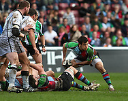 London - Saturday April 3rd, 2010: Danny Care of Harlequins passes out of a ruck during the Guinness Premiership match between Harlequins and Newcastle at the Twickenham Stoop, London. (Pic by Andrew Tobin/Focus Images)