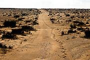 Israel, Negev Desert landscape