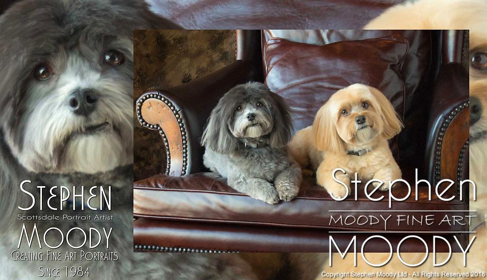 Fine Art Pet Portraits by Stephen Moody - Master Photographer, Scottsdale, AZ