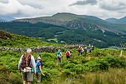 Views while descending eastwards from Muncaster Fell. England Coast to Coast hike with Wilderness Travel, day 1 of 14: Starting with dipping our boots in the Irish Sea at Ravenglass in Lake District National Park, we ascended Muncaster Fell, seeing the ruins of a Roman bathhouse along the way. We then passed Muncaster Castle  and descended into Miterdale. Overnight in Irton Hall, Eskdale, Holmrook, Cumbria county, England, United Kingdom, Europe. Irton Hall is a large, mostly 1800s house with a 1300s tower.  [This image, commissioned by Wilderness Travel, is not available to any other agency providing group travel in the UK, but may otherwise be licensable from Tom Dempsey – please inquire at PhotoSeek.com.]