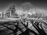 A cyclists seemingly held captive by some manacing shadows in Central Park today, tuesday Jan 19, 2016.
