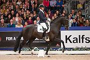 Joyce Lenaerts - Firestone<br /> Finale Isah Hengstencompetitie 2015/2016<br /> KWPN Hengstenkeuring 2015<br /> © DigiShots