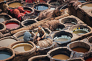 Tanneries in Fes, Morocco 2006