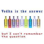 Famous quotes series: Vodka is the answer but I can't remember the question