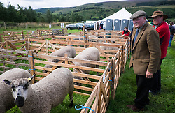 © Licensed to London News Pictures.29/08/15<br /> Bilsdale, UK. <br /> <br /> A sheep farmer looks over the sheep pens during the 105th Bilsdale Country Show in North Yorkshire.<br /> <br /> Photo credit : Ian Forsyth/LNP