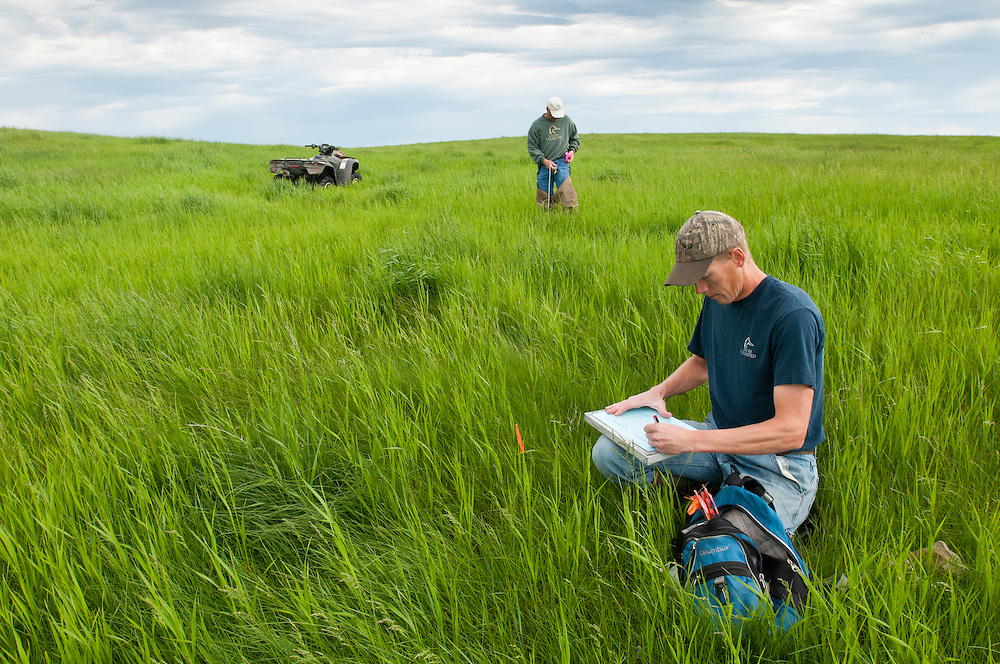 Ducks Unlimited biologists at work, Goebel Ranch, McPherson County, South Dakota