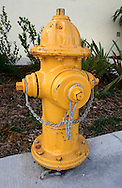 Hydrant on yellow.