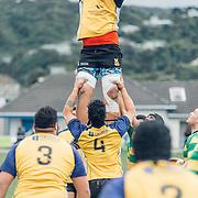 Wellington Samoa Rugby