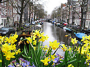 Canal in Amsterdam, Holland