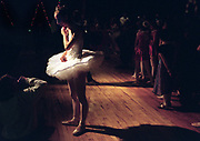 "For The Love of Dance----Dancer Chlo' Sauer listens during announcements at the end of a dress rehearsal for a Nutcracker performance at the St. Helena High School auditorium. Chlo', 14, is a freshman at Napa High. She has been studying ballet for 11 years, taking classes at the Napa Regional Dance Company. Though not sure if she will pursue a career as a professional dancer, ""it's very competitive,"" Chlo' says, ""but I'll definitely be dancing my whole life."" In her first performance in a production of a complete ballet, Chlo' danced the parts of snowflake, snowqueen, dewdrop and marzipan."