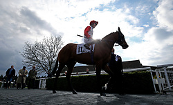 General view of Testa Rossa ridden by Phil Dennis before the Matchbook Betting Podcast Rosebery Handicap during the Easter Family Fun Day at Kempton Park Racecourse.