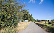 Quiet country road with hedgerow and fence, Ewarton, Suffolk, England
