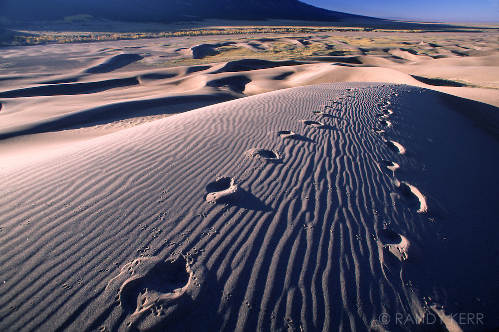 Footprints in the sand dune