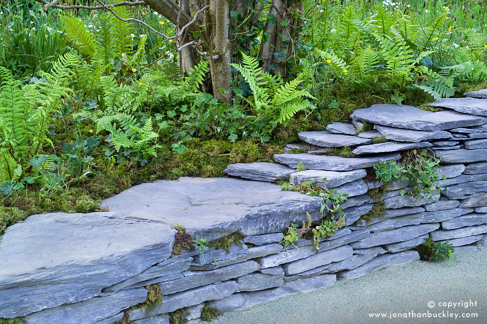 Low slate wall in the Moat and Castle Eco-Garden. Design: Ellen Mary Fenton and Neil Malachy Black - Chelsea 2005