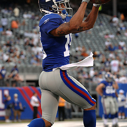 21 Aug, 2010: New York Giants wide receiver Tim Brown (15) catches a pass during warmups for NFL preseason action between the New York Giants and Pittsburgh Steelers at New Meadowlands Stadium in East Rutherford, New Jersey.