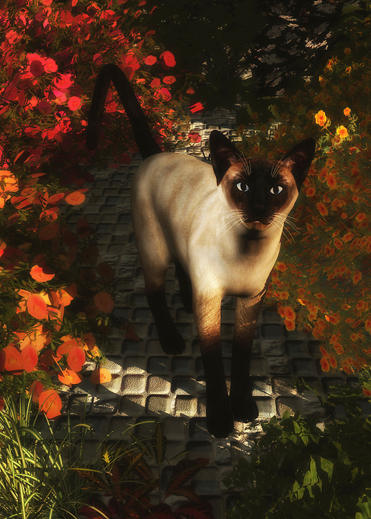 A Siamese cat is looking, but at what? Surrounded by beautiful flowers, standing on a country road, the Siamese Cat in this piece is perhaps staring back at the viewer. However, it is entirely possible that the cat is looking at something else entirely. Whatever the Siamese is staring at, it certainly seems to be something that has caught them slightly by surprise. What happens next is anyone's guess. Considering the light, breezy day the Siamese appears to be having, it is likely something pleasant. This beautiful piece is available as wall art, t-shirts, or on a variety of interior products.