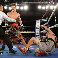 Ricky Tomlinson (camo) beats Lucas Grant during a Telemundo boxing match at the A La Carte Pavilion  on Friday, August 1, 2014 in Tampa, Florida. (AP Photo/Alex Menendez)
