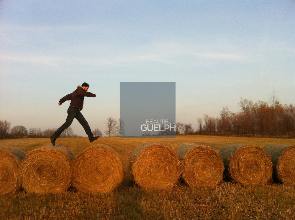 """Guelphonography 2015 Finalist.  """"Bale Runner"""" by Beth Templeton"""