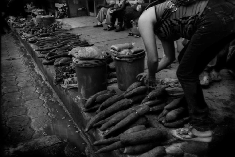 Kichwa woman adjusts her manioc root for sale on the pavement in Coca.  Contaminated water will contaminate everything dependent on water, meaning all life that comes in contact with it, including farm produce like manioc.  That is another potential way petroleum contamination can enter the human food chain.  Coca, Ecuador.
