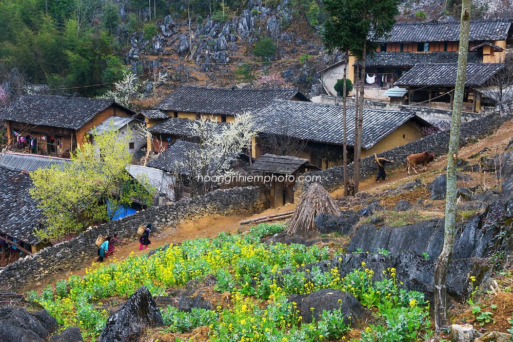 Vietnam Images-landscape-phong cảnh-Village-Hà Giang