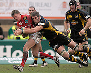Wycombe, GREAT BRITAIN, Wasps, Simon SHAW, hangs onto Llanelli's Liam DAVIES, during the Heineken Cup game Wasps vs Llanelli Scarlets, at Adams Park Stadium, Bucks, 13.01.2008 [Photo, Peter Spurrier/Intersport-images]
