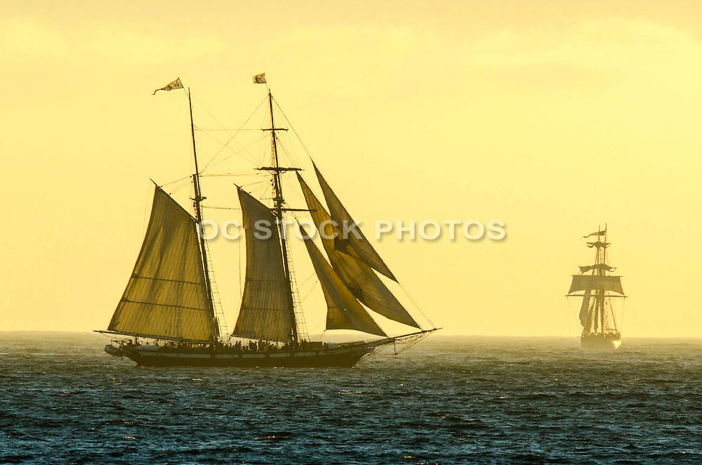 Tall Ships Festival in Dana Point California