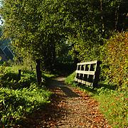 Het kerkveldervoetpad loopt van af Beckum door de bossen naar Delden, Beckum, Hengelo, Overijssel,
