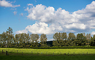 Onuku - Pre Field Day