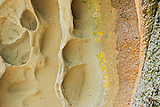 Sandstone detail<br /> <br /> Hornby Island in the Gulf Islands<br /> British Columbia<br /> Canada
