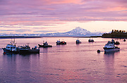 Alaska. Kenai Peninsula. Kenai. Commercial fishing fleet at anchor at sunset. Kenai River mouth. Redoubt Volcano
