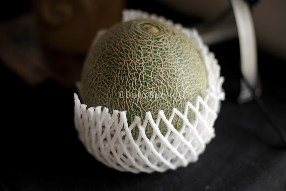 still life with protective wrapped cantaloupe melon