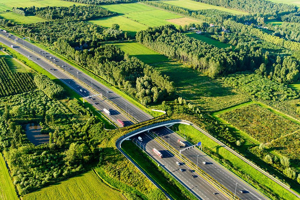 Nederland, Gelderland, Gemeente Geldermalsen, 23-08-2016; Ecoduct Lage Veld, ook  ecoduct Beesdsche Veld genoemd, A2 ten noorden van Beesd. <br /> Ecoduct highway / motorway A2<br /> aerial photo (additional fee required); <br /> luchtfoto (toeslag op standard tarieven);<br /> copyright foto/photo Siebe Swart