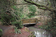 Maidenhead, United Kingdom.  General View, Narrow bridge across a small stream. Raymill Island banks of the River Thames. <br /> <br /> Friday  03/02/2017 <br /> <br /> © Peter SPURRIER,<br /> <br /> Leica Camera AG  LEICA M (Typ 262)  1/60 sec.  mm 1.4 100 ISO.  29.3MB