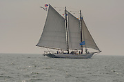 The A.J. Meerwald, a schooner from Bivalve, New Jersey under sail as the Parade of Ships heads out of Niantic Harbor toward New London, Connecticut during OpSail 2012 CT.