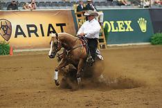 Kentucky 2010 WEG