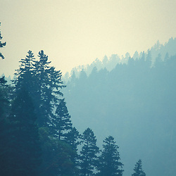 Wild Rogue Wilderness, OR.Siskiyou Mountains. Forest Fire. Smoke.  Siskiyou National Forest.  June.