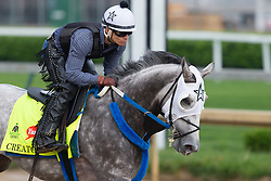 Derby 142 hopeful Creator with Abel Flores up, center, were on the track for training, Sunday, May 01, 2016 at Churchill Downs in Louisville.
