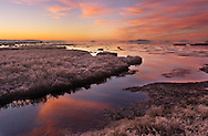 A New Day - Boundary Bay, British Columbia