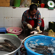 A Vietnamese women prepares fish at the market in Ho Chi Minh City, Vietnam. 3rd March 2012. Photo Tim Clayton