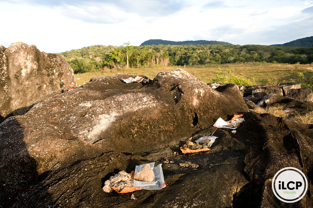 African Leopard (Panthera pardus pardus) scat being dried out for genetic analysis, Lope National Park, Gabon