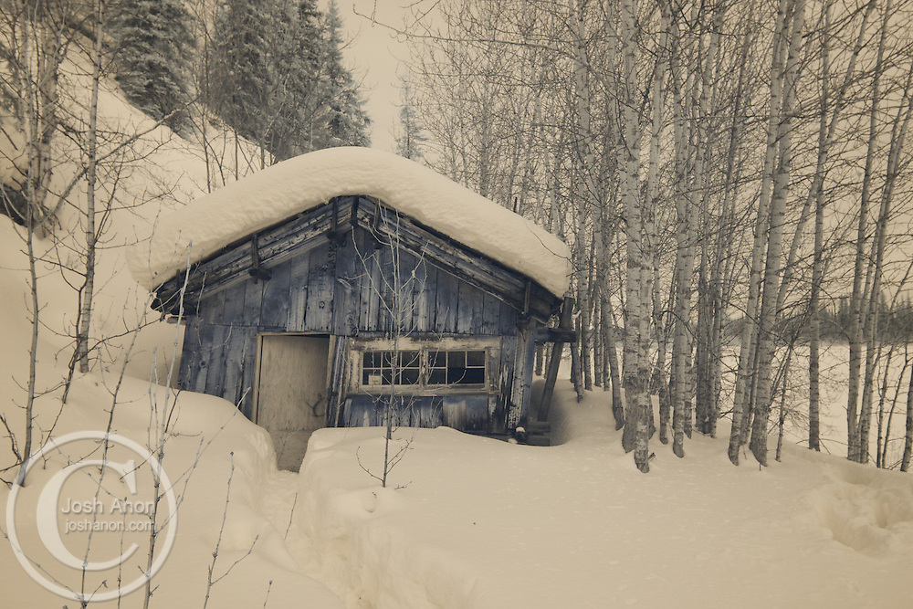 A cabin sits in the abandoned town of Old Bettles admist the snow in Alaska, seen in infrared.
