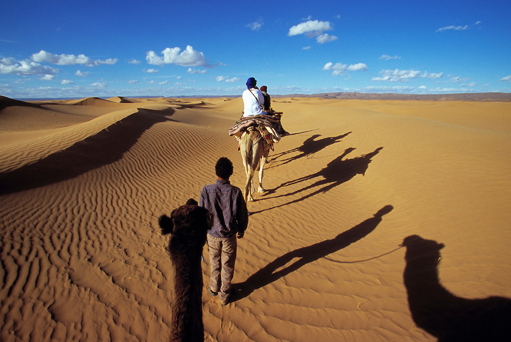 Travel. Editorial image. Camel train in Saharan desert, Marocco.