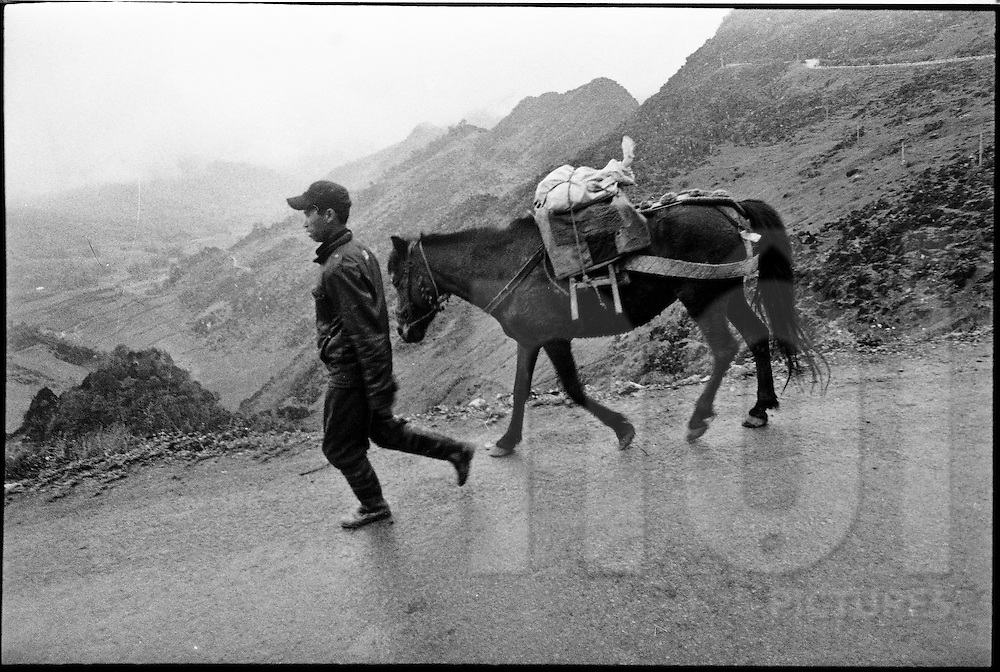 A man walks with his horse along a road in Ha Giang Province, Vietnam, Southeast Asia
