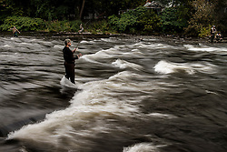 Pulaski, N.Y. is the hub of activity as the 2013 Salmon season is underway.  The Salmon River is stocked every year with Chinook and Coho Salmon to lure fisherman back to a world-class fishery.