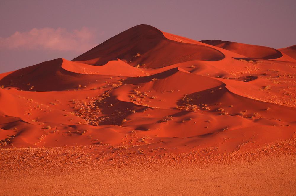 Sand Dunes, Sossusvlei area, Namib Naukluft National Park, Hardap Region, Namibia..