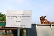 Vienna, Austria. Veterinärmedizinische Universität Wien (Vetmeduni Vienna).<br /> Department/Clinic for Companion Animals and Horses (Department/Universitätsklinik für Nutztiere und öffentliches Gesundheitswesen in der Veterinärmedizin).