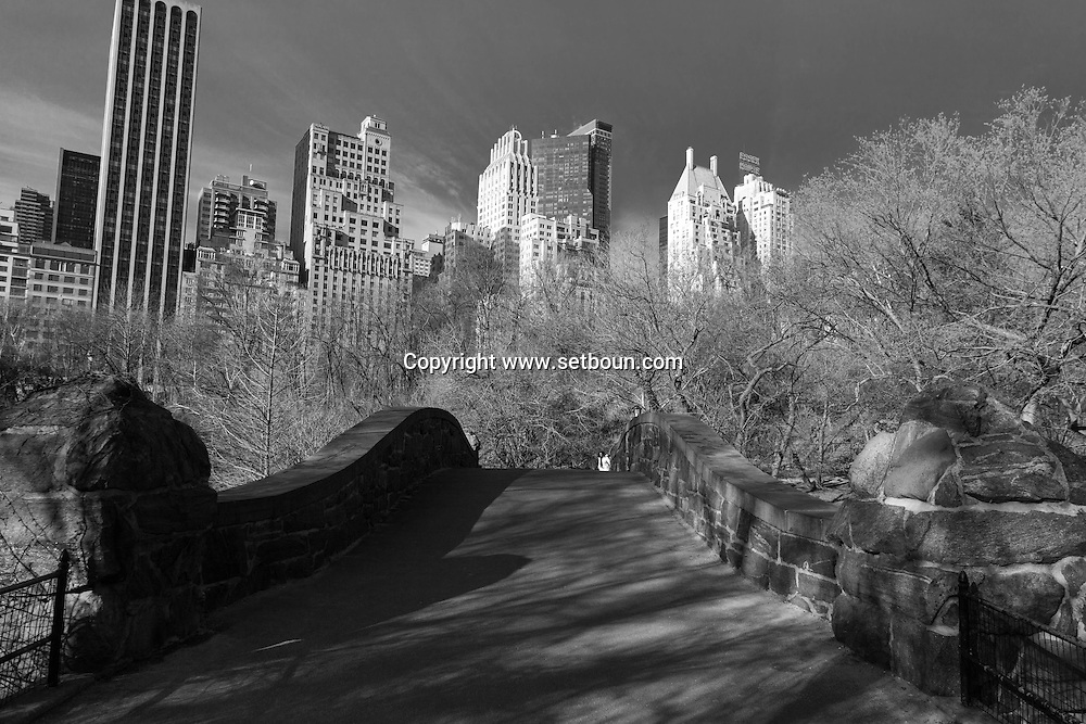 New York. Central park and skyline  Manhatan, New York  Usa /  Central park  and skyline  Manhatan, New York  USa