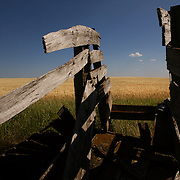 "An old cattle chute recalls the ""old west"" near Williston, North Dakota.  The northern prairie was the route Lewis & Clark took to the Pacific Ocean in 1804.  photo by David Peterson"