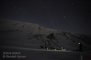 Guide dog sleds beneath stars on a January afternoon in the months-long polar night near Longyearbyen, Svalbard, Norway.
